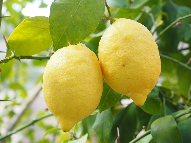 The Master Cleanse: What Is It?