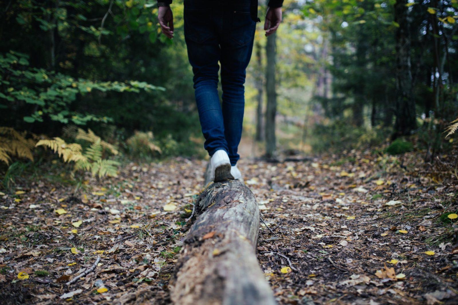 Balancing on a log