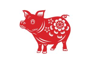 Year of the Pig: Chinese New Year 2019