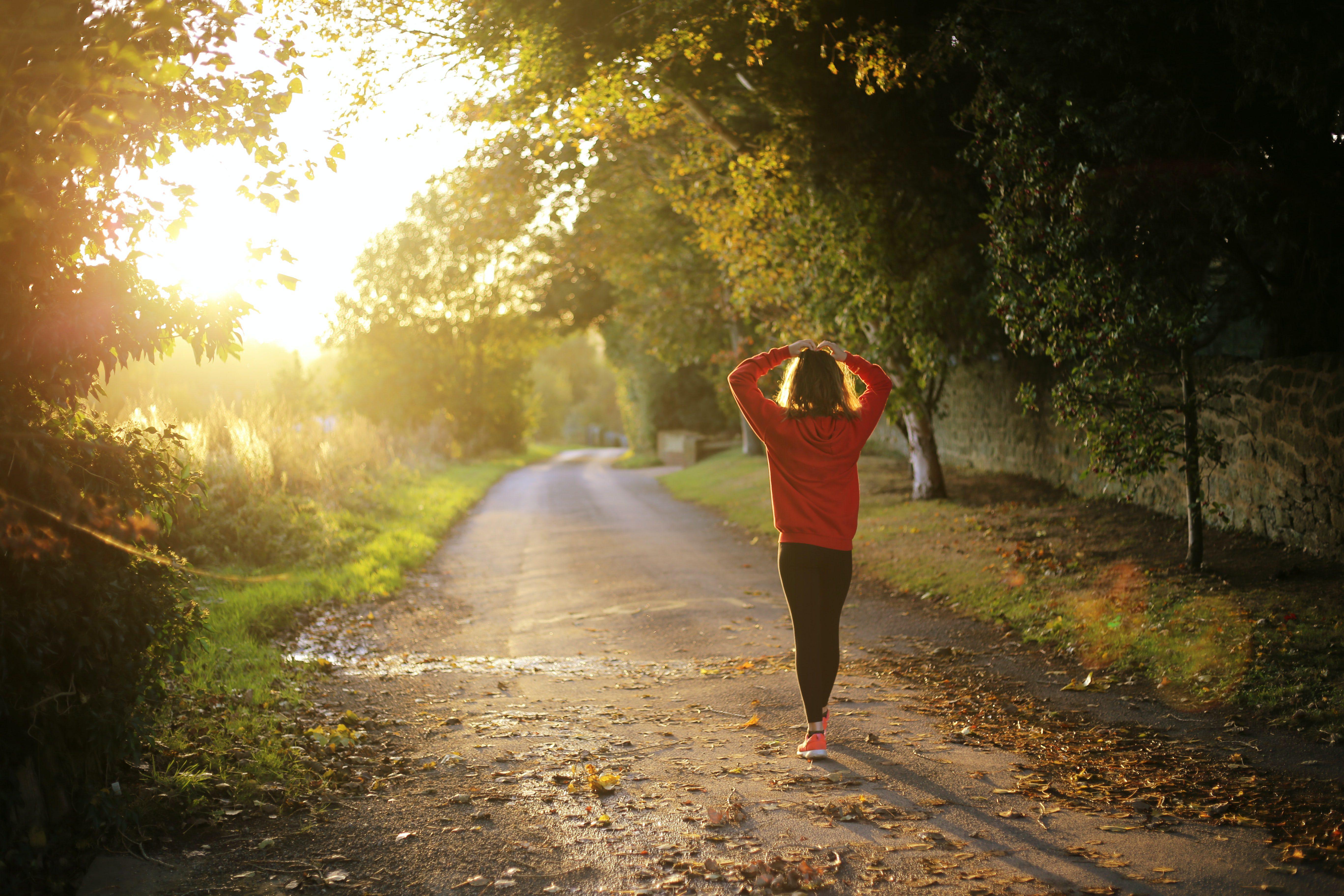 How to Improve Endocrine Health