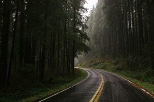 Damp Road