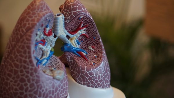 Research: Acupuncture and Respiratory Issues